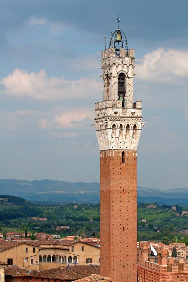 del mangia siena torre royaltyfri bild