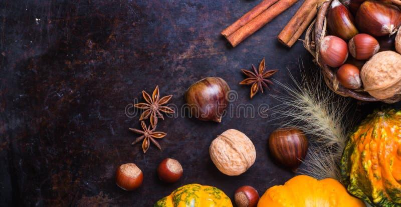 Del otoño de la caída todavía de Halloween composición de la vida con la castaña de las nueces de la calabaza imágenes de archivo libres de regalías