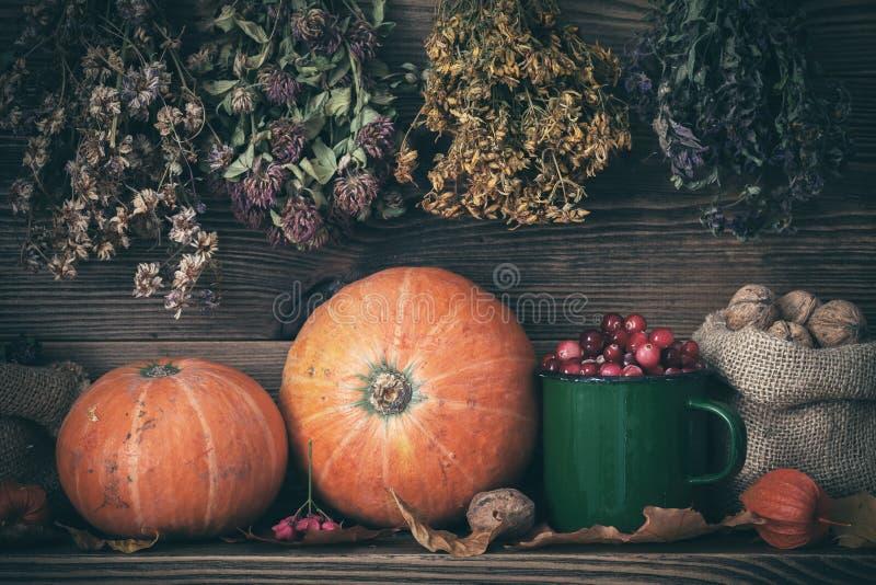Del otoño todavía de la cosecha vida: calabazas, arándanos, nueces y manojos colgantes de hierbas curativas imagen de archivo libre de regalías
