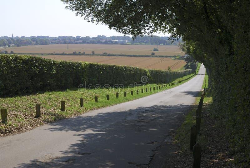 Del país del carril colina abajo en Sussex. Reino Unido fotos de archivo