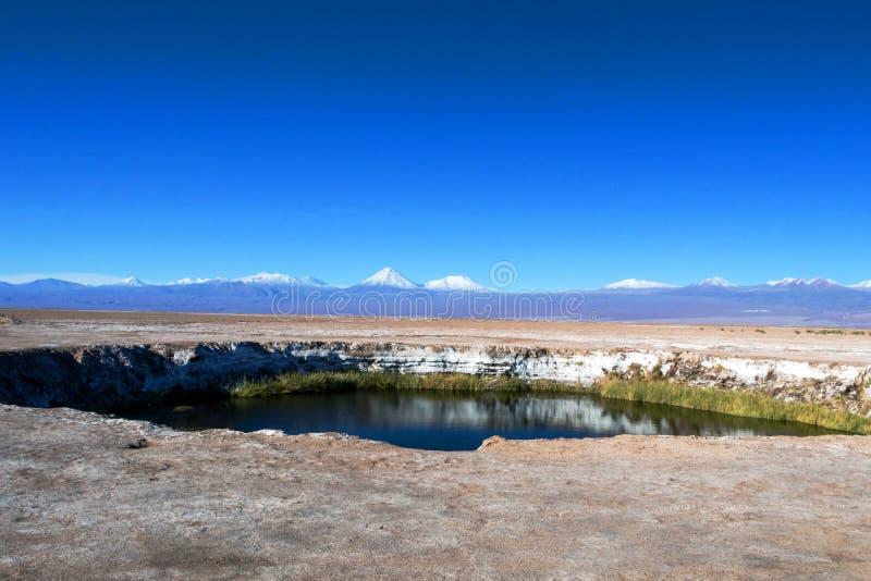 Del piano Salar di Ojos della laguna del sale nel deserto di Atacama vicino a San Pedro de Atacama, regione di Antofagasta, Cile immagini stock