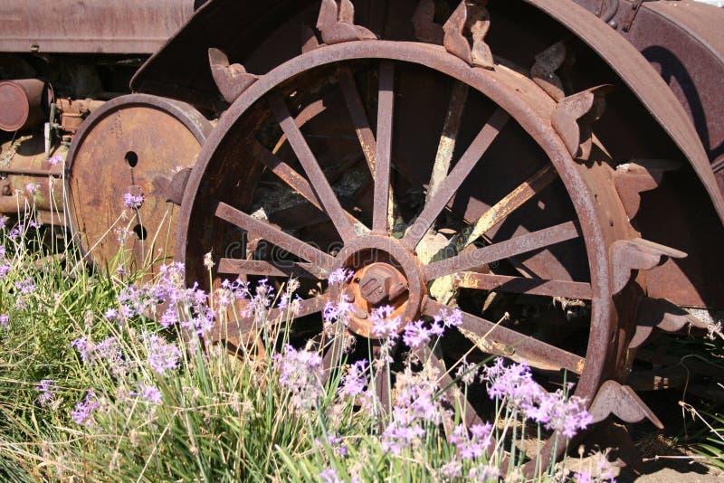 Del vecchio ferro? immagine stock
