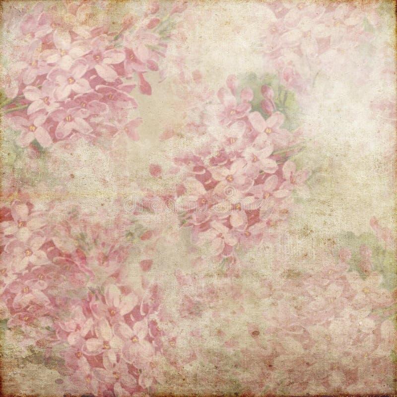 Del vintage del Grunge del fondo blanco rosado 139 del verde suavemente imágenes de archivo libres de regalías