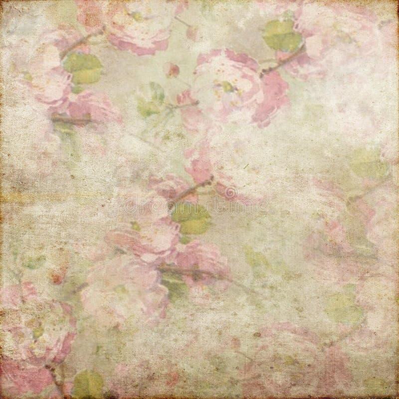 Del vintage del Grunge del fondo blanco rosado 146 del verde suavemente imagen de archivo libre de regalías