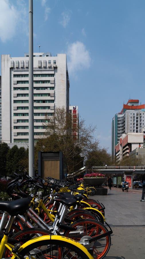 Dela cykeln över hela gatorna av Kina royaltyfria foton