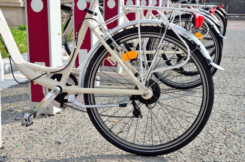 Dela för cykel fotografering för bildbyråer
