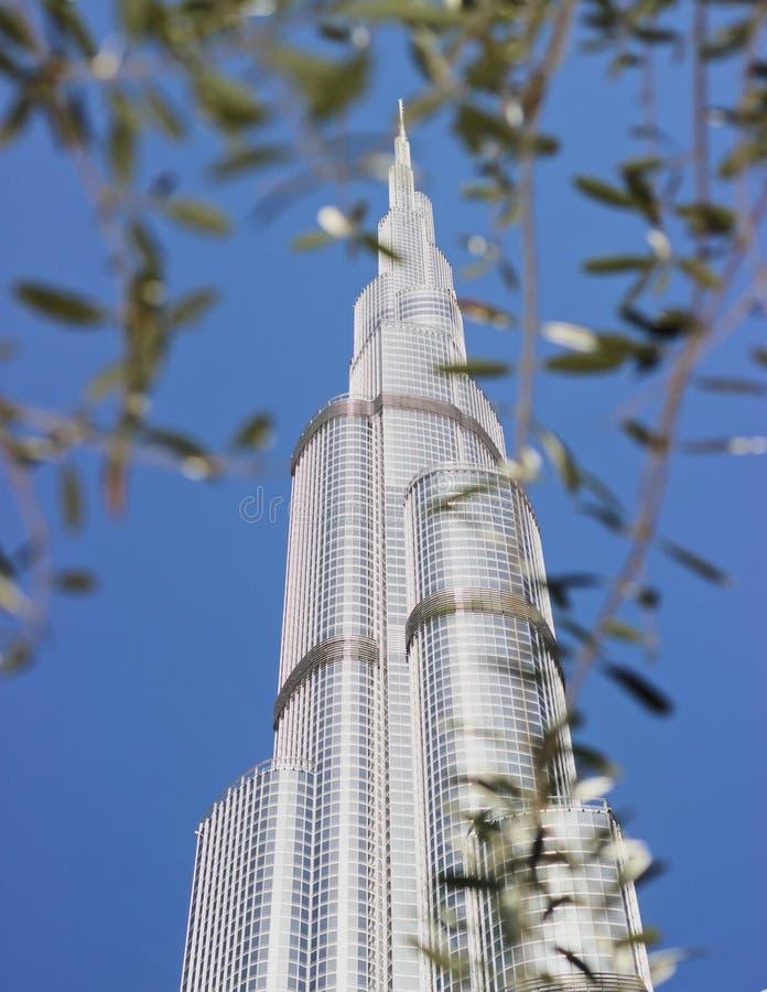 Delante de la torre más alta fotos de archivo libres de regalías