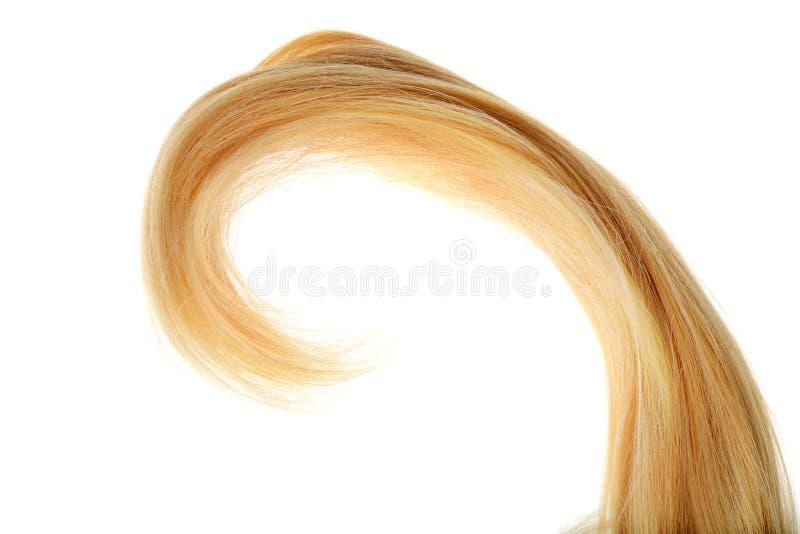 Delar av blond hår i en isolerad kruka arkivfoton