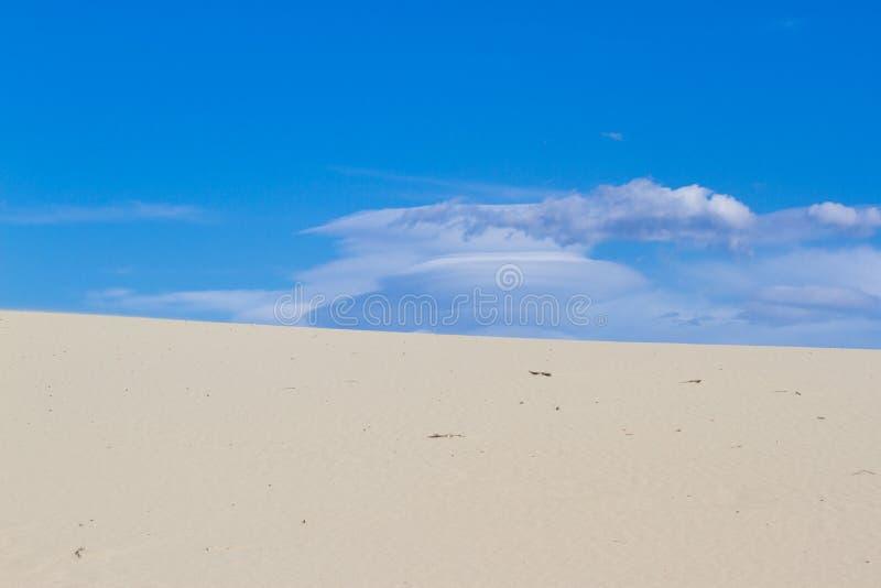 Delat fotografi på två del med sand och himmel Landar panoramabakgrund Hållbart ekosystem royaltyfria bilder