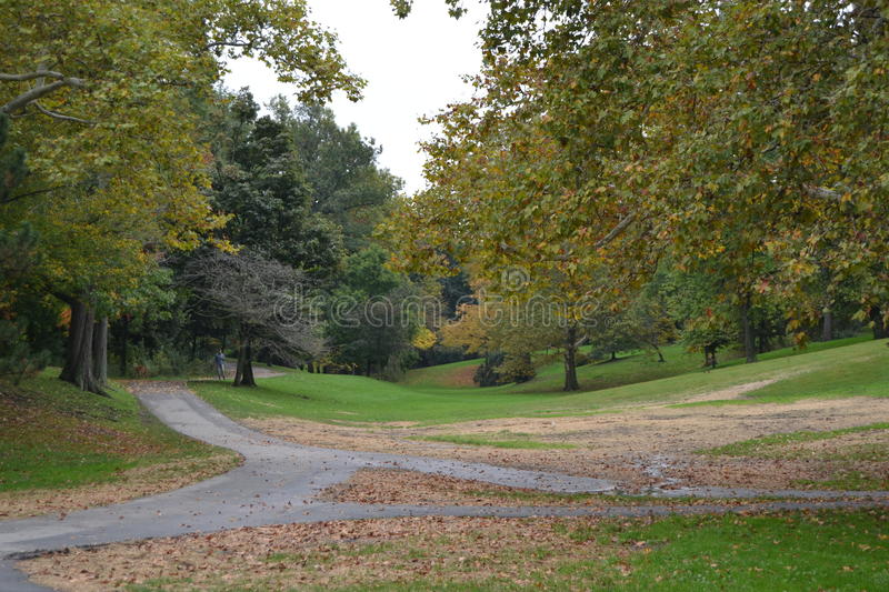 Delaware Park in the Fall royalty free stock images