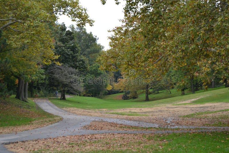 Delaware-Park im Fall lizenzfreie stockbilder