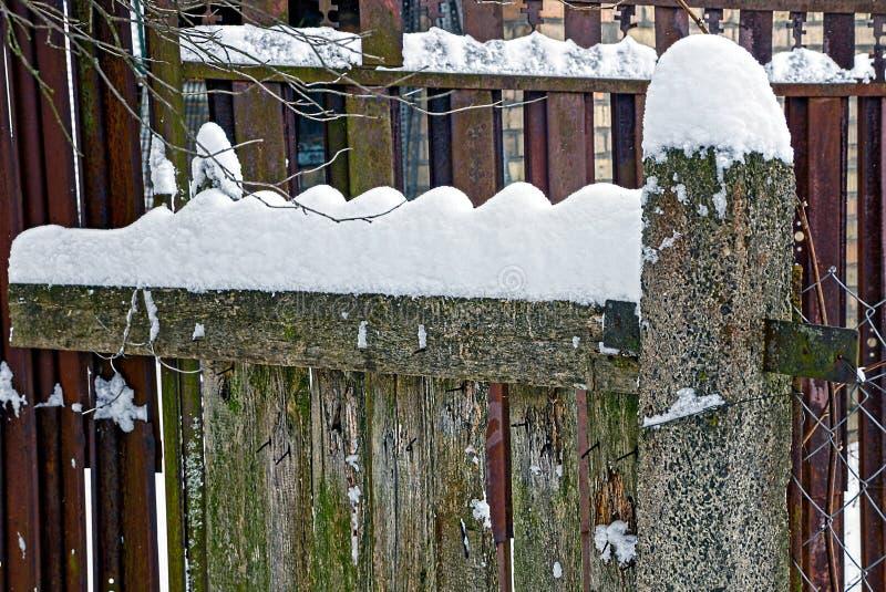 Delen av en trägrå färg fäktar under snön fotografering för bildbyråer
