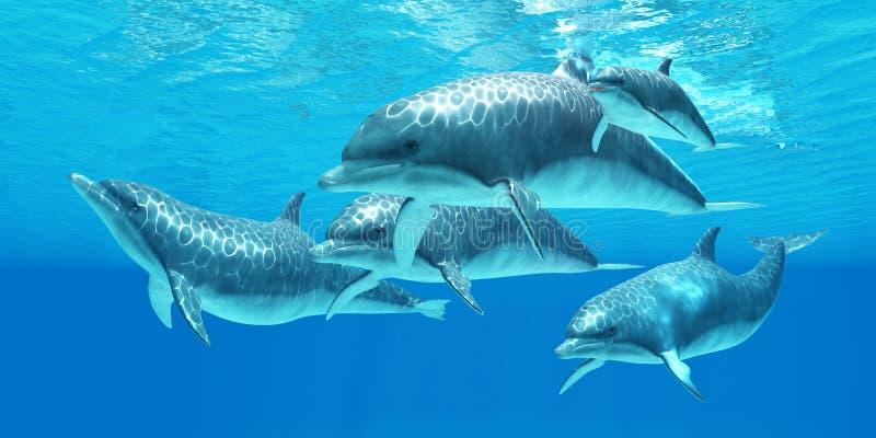 Delfín de Bottlenose stock de ilustración