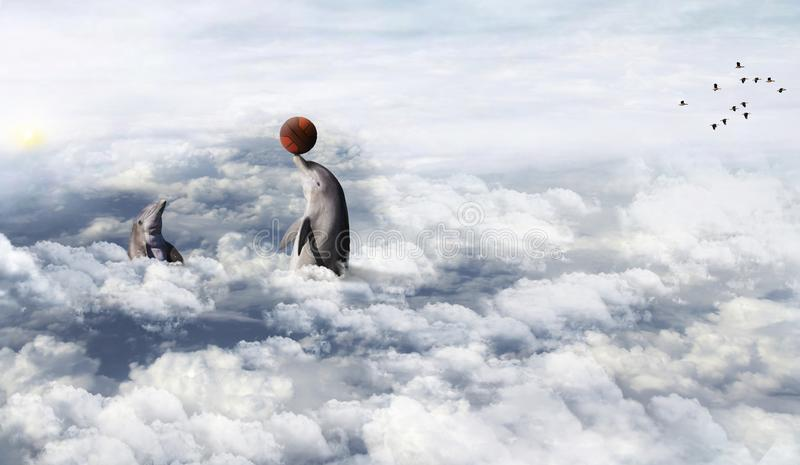 Delfín que juega en las nubes imagen de archivo libre de regalías