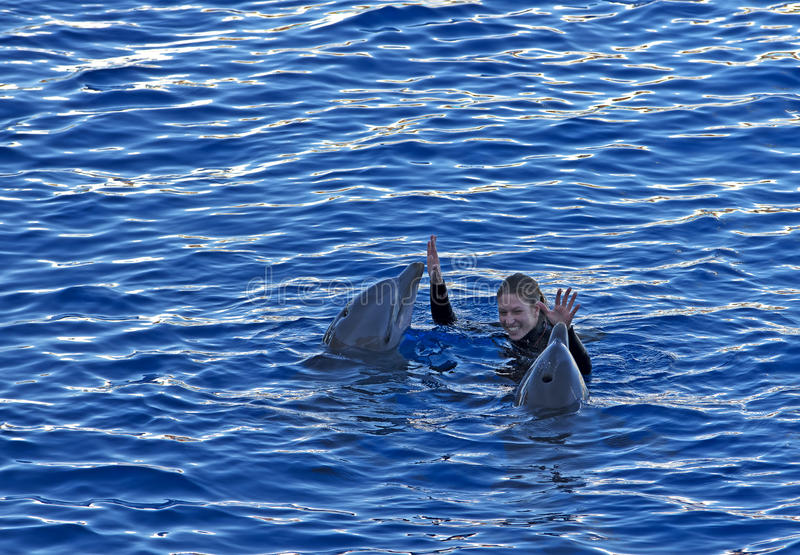 Delfínes y una mujer imagenes de archivo