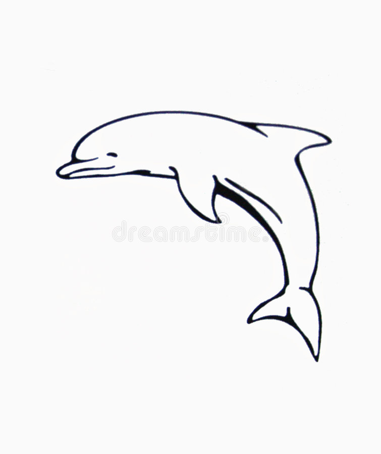 Delfin stock photo