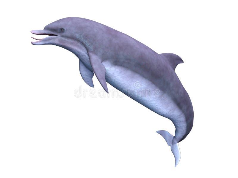 delfin royalty ilustracja