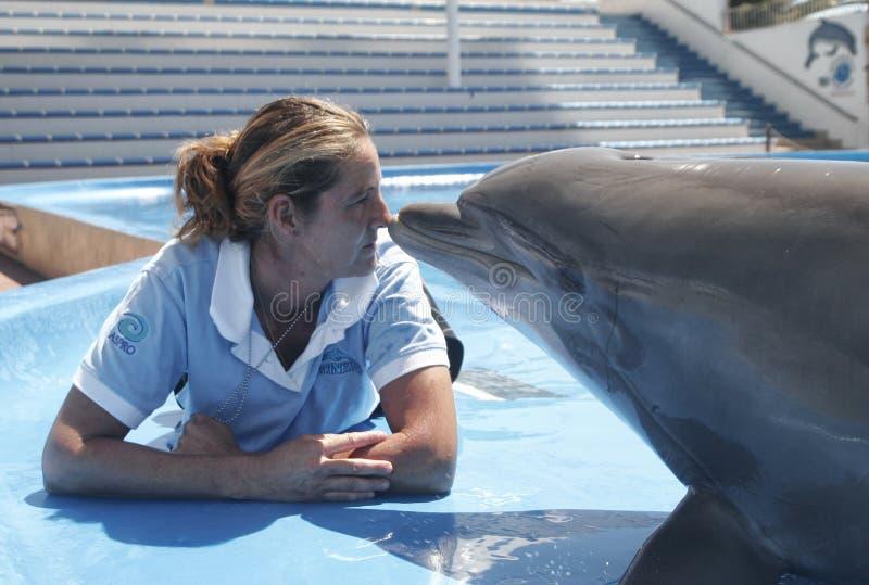 Delfin och instruktör arkivbild