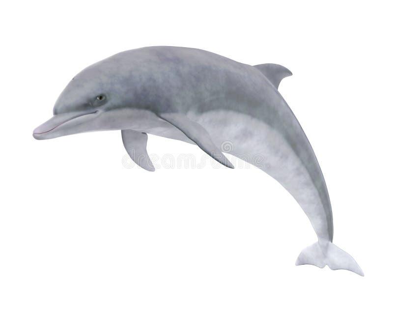 delfin odizolowywający ilustracja wektor