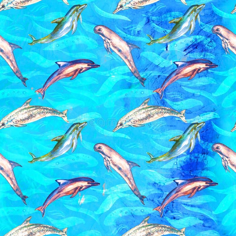 Delfin rozmaitość: pospolity bottlenose, Beaked, Atlantyk Dostrzegał i Risso ` s, bezszwowy wzór na jaskrawej błękitnej ocean pow royalty ilustracja