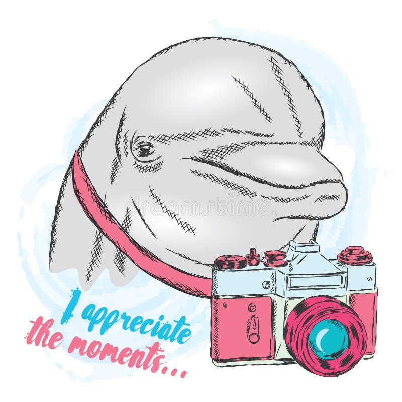 Delfin z kamerą ilustracji