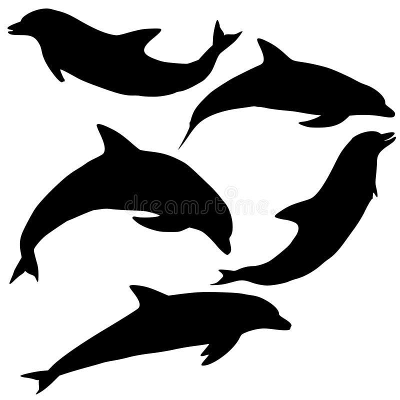 delfinillustrationvektorer vektor illustrationer