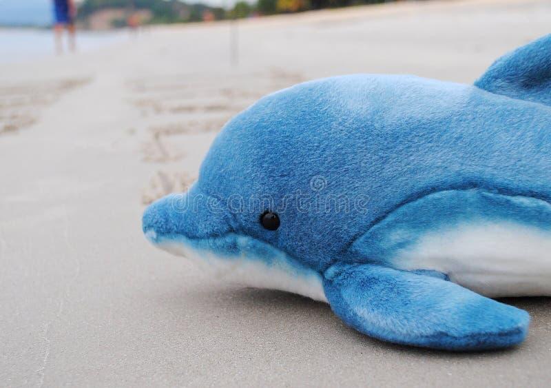 Delfinleksak fotografering för bildbyråer