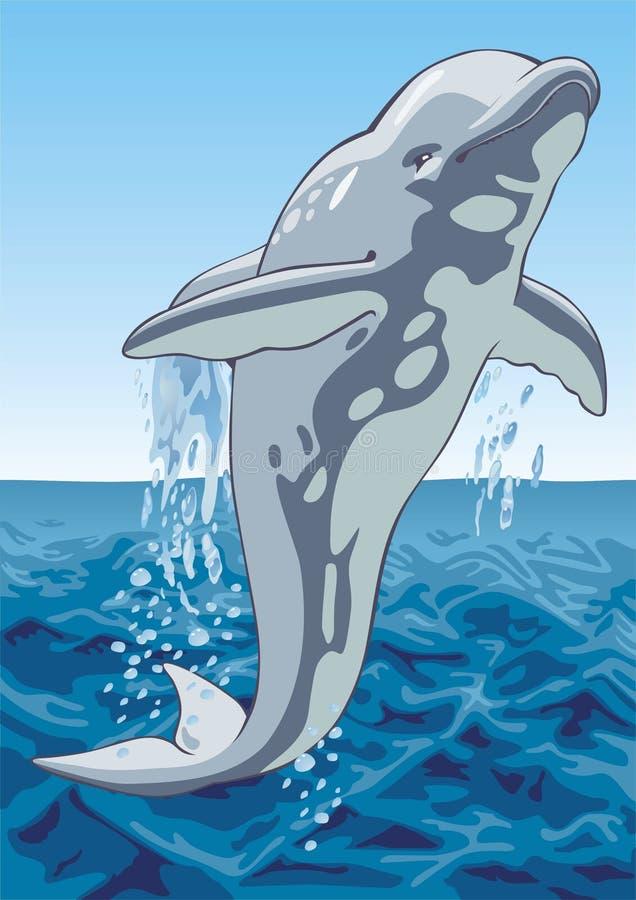 Delfino illustrazione vettoriale