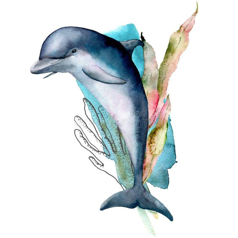 Delfino dell'acquerello, corallo e composizione nell'alga Illustrazione subacquea dipinta a mano isolata su fondo bianco illustrazione vettoriale
