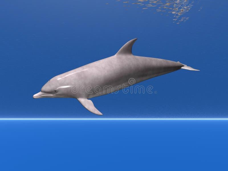 Delfino in mare illustrazione vettoriale