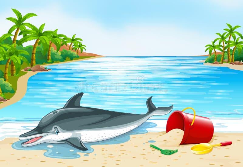 Delfinu lying on the beach na plaży ilustracja wektor