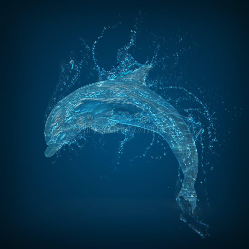 Delfinvatten royaltyfria bilder