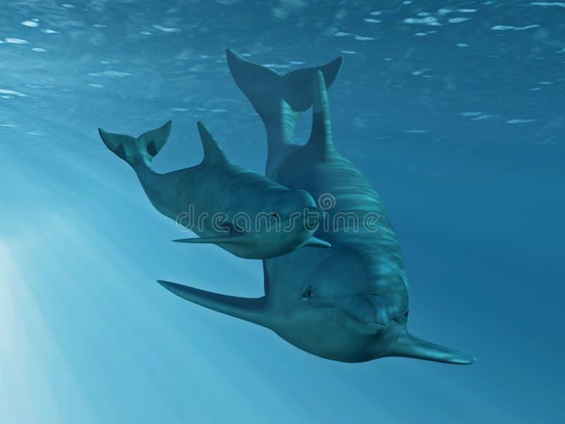 delfiny dwa ilustracji
