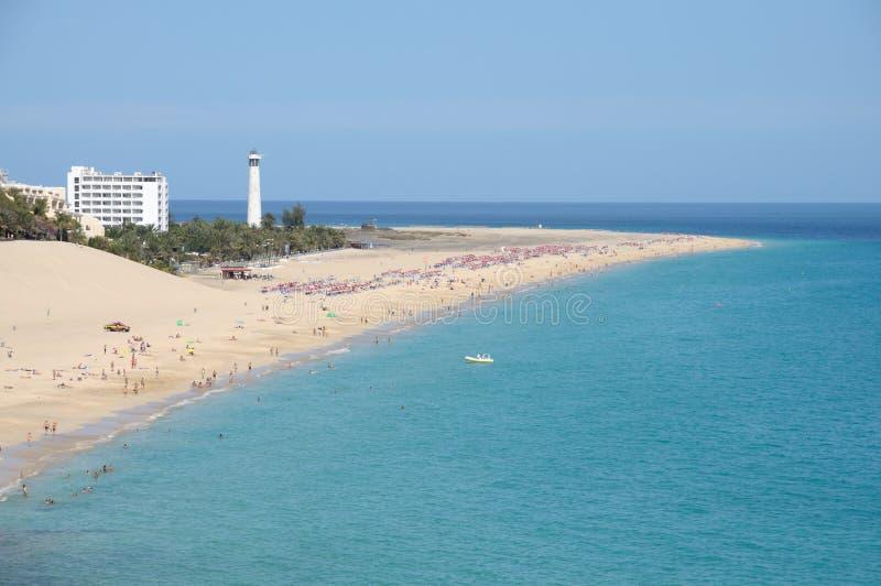delfuerteventura matorral playa spain arkivfoto