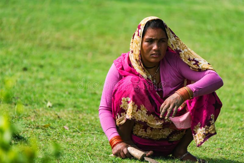 DELHI, INDE - 9 NOVEMBRE 2017 : Jardinage indien local de femme photos stock