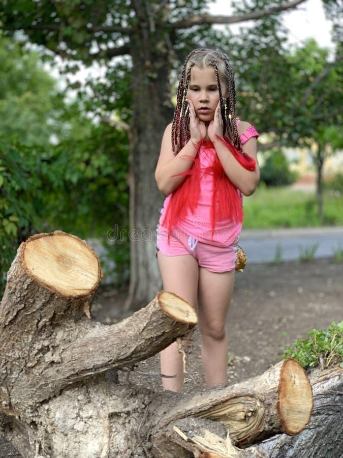 Delia concentr? Una muchacha con las trenzas africanas fotografía de archivo