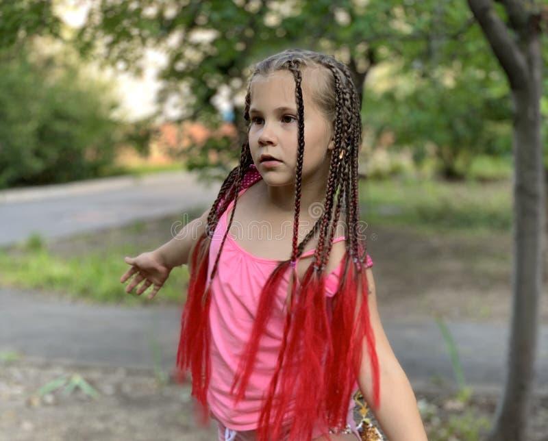 Delia concentr? Una muchacha con las trenzas africanas fotos de archivo
