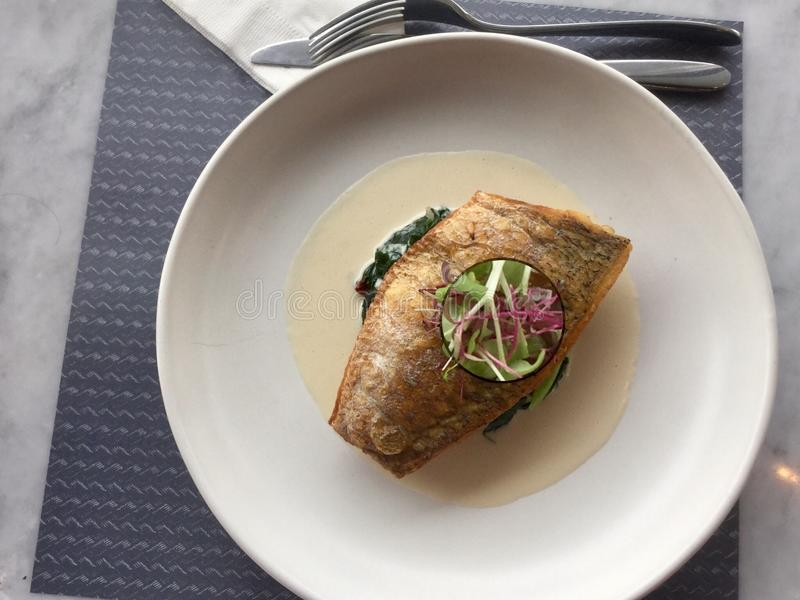 Delicacy .Fish on spinach . Sea bass classic . Sea bass on Spinach with wine sauce stock photos