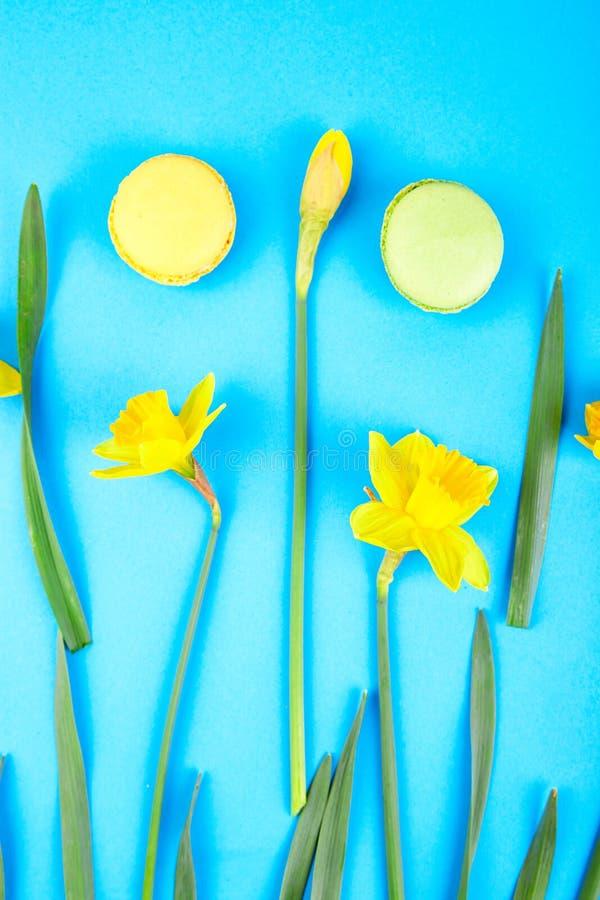 Delicadeza francesa, macarrones coloridos con el flor de la primavera imágenes de archivo libres de regalías
