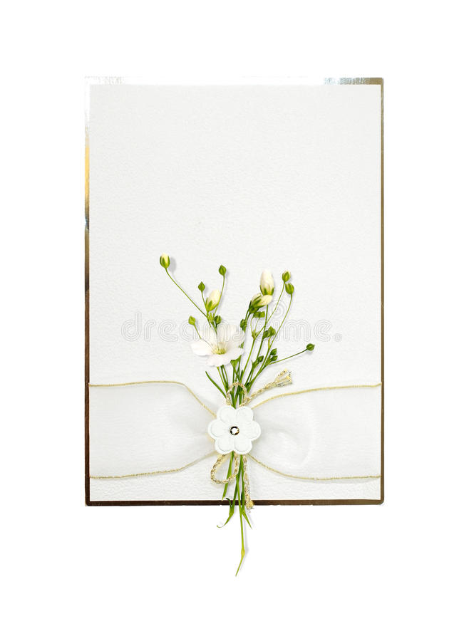 Download Delicate card with flowers stock illustration. Image of card - 12773585