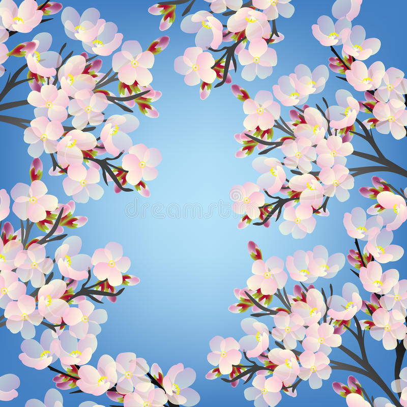 Delicate cherry flowers on branch stock illustration