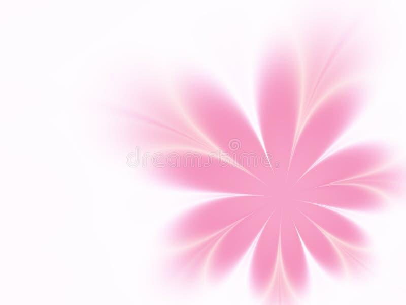 Delicate flower vector illustration