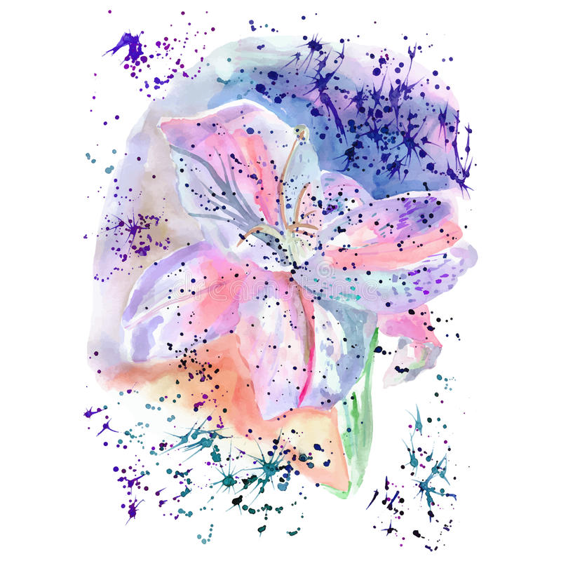 Delicate lily flower in watercolor splashes royalty free stock photos