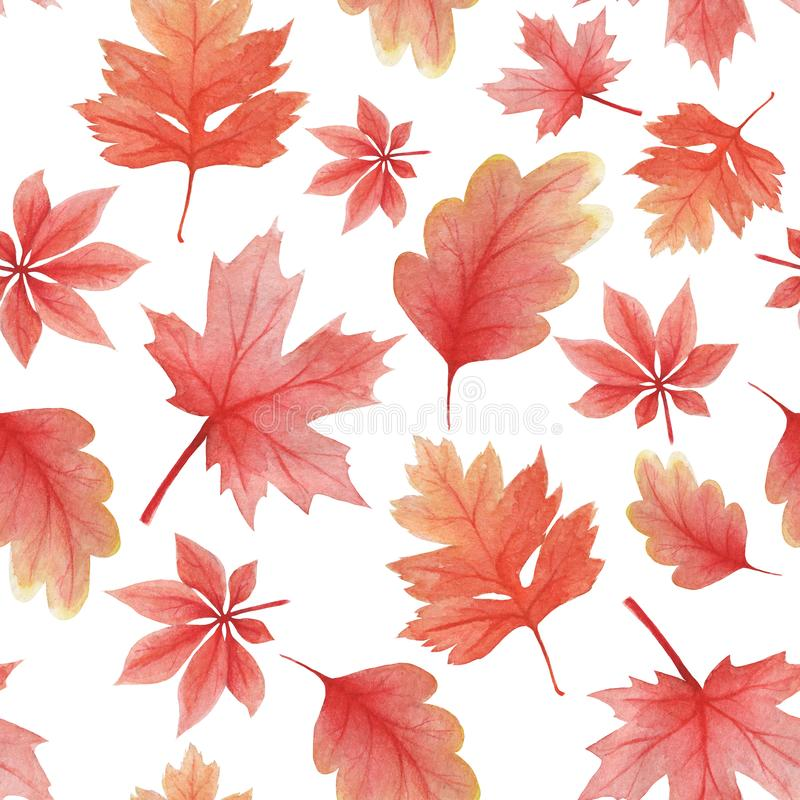 Free Delicate Pattern In Watercolor Style. Background From Autumn Oak Leaves Royalty Free Stock Image - 160978036
