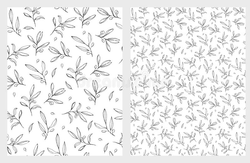 Hand Drawn Olive Twigs Vector Pattern. Sketched Single Olive Branches. Delicate Romantic Garden Illustration. Black Twigs a White Background. Lovely Repeatable vector illustration