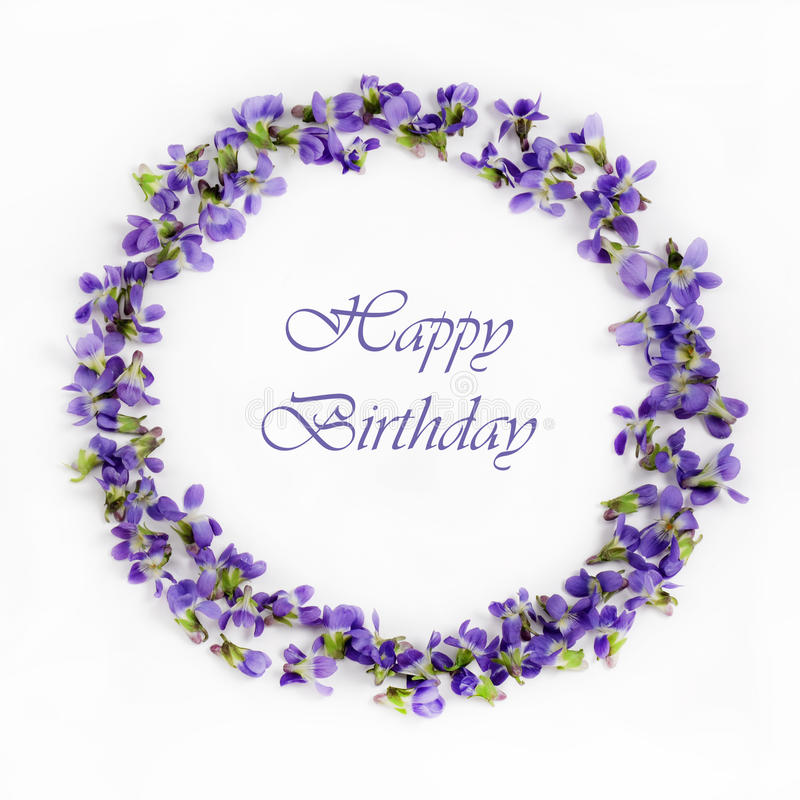 Delicate spring violets on a white background close up. Happy birthday card. Beautiful fragile spring violets on a white background close up. Happy birtday card stock images
