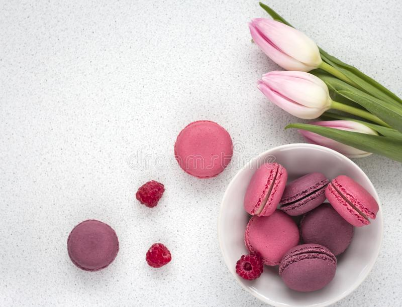 Delicate tulips with macaroons on white background.  royalty free stock images