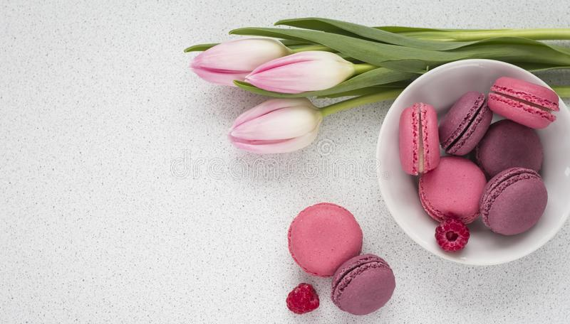Delicate tulips with macaroons on white background with copy space holiday concept.  stock photos