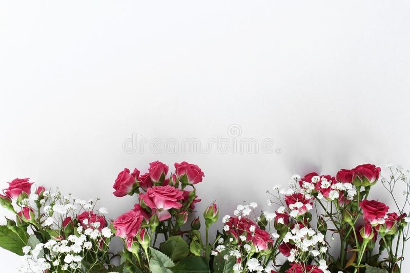 Delicate wedding roses flowers background royalty free stock image