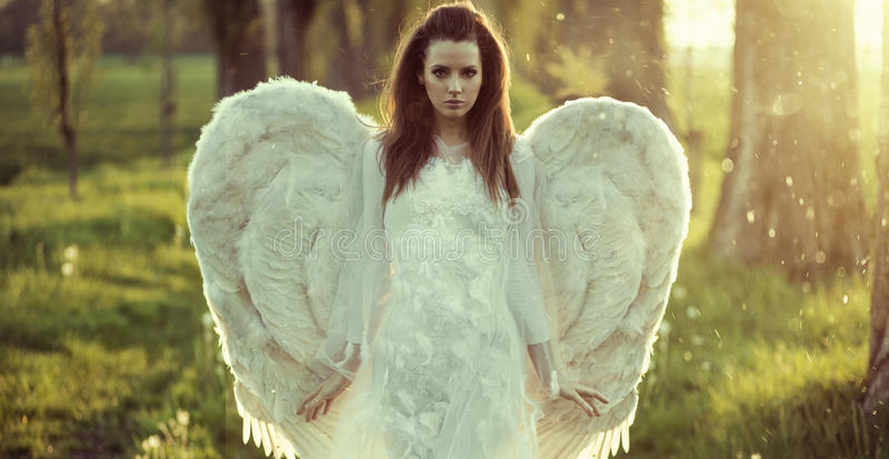 Delicate woman dressed as an angel royalty free stock images